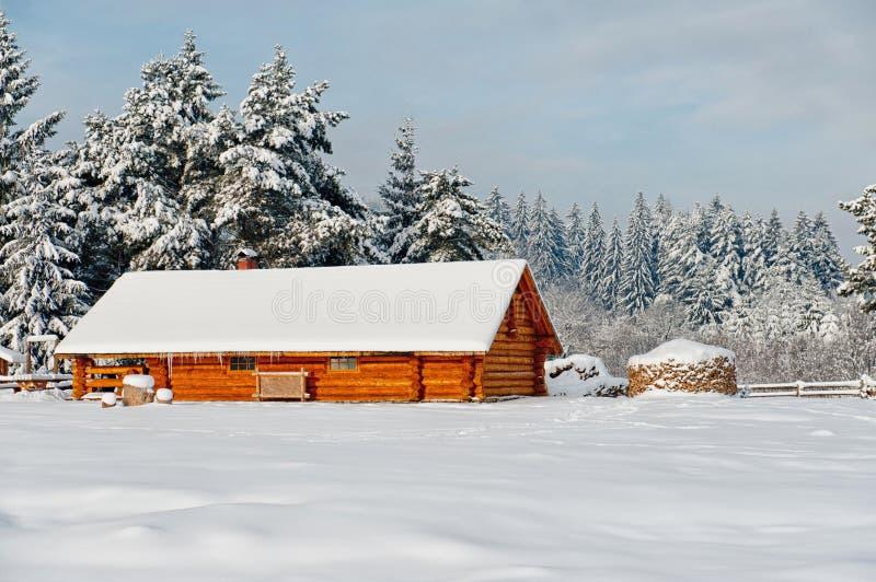 Download Деревянная кабина стоковое фото. изображение насчитывающей пуща - 37930726