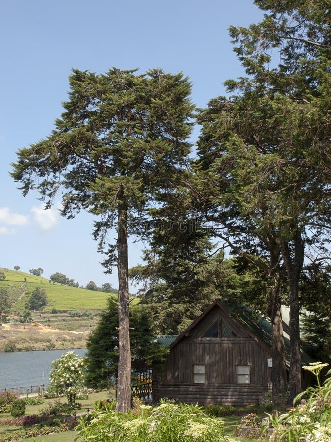 Деревянная казарма стоковые фотографии rf