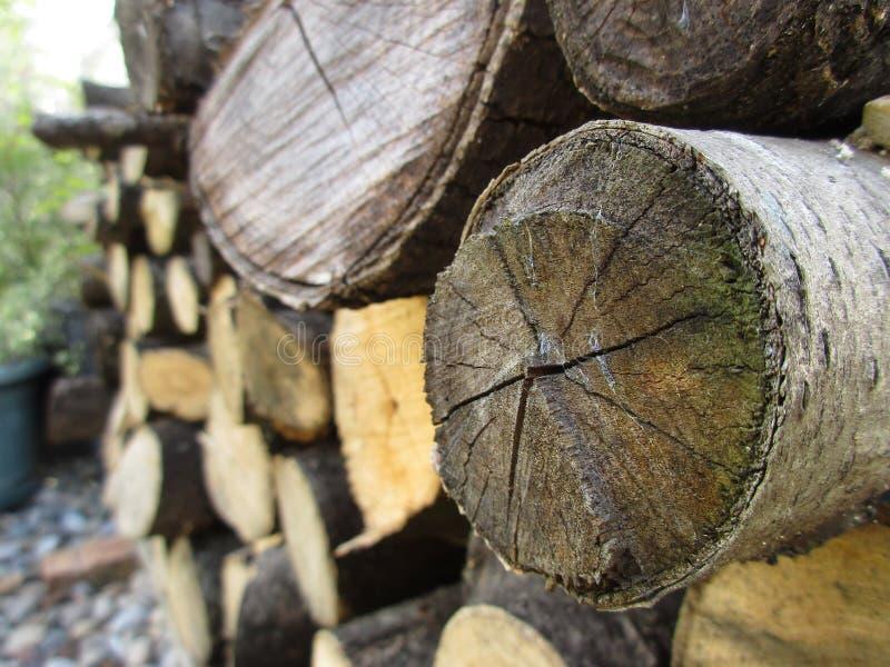 Деревянная куча стоковое изображение rf