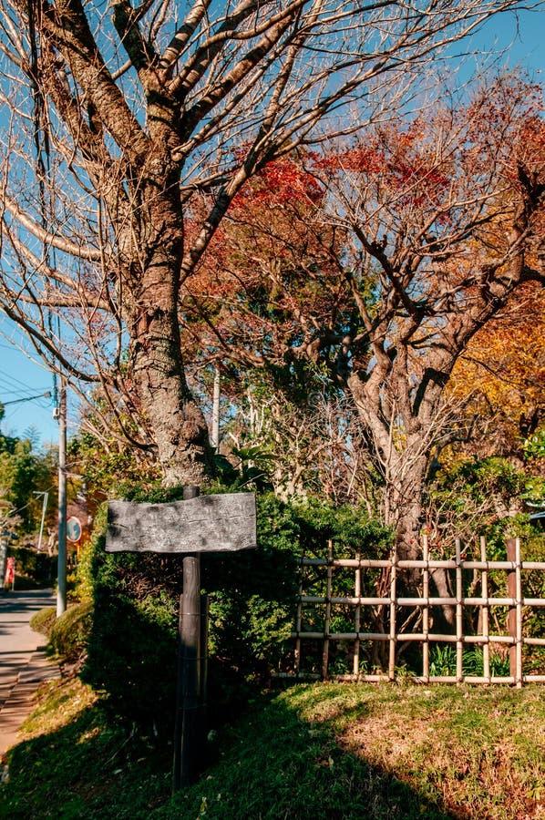 Деревянная листва знака и осени в городе Сакуры, Chiba, Японии стоковые фото