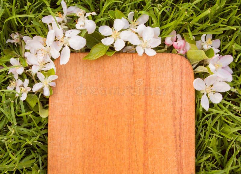 Download Деревянная доска и ветвь цветка яблони Стоковое Изображение - изображение насчитывающей трава, environment: 40577095