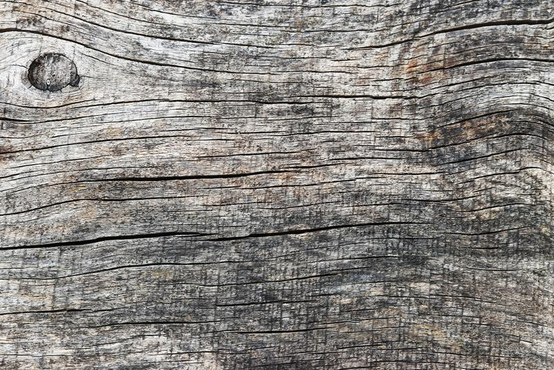Деревянная предпосылка с линиями и knotholes стоковая фотография rf