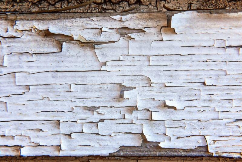 Деревянная предпосылка с поцарапанный стоковые фотографии rf