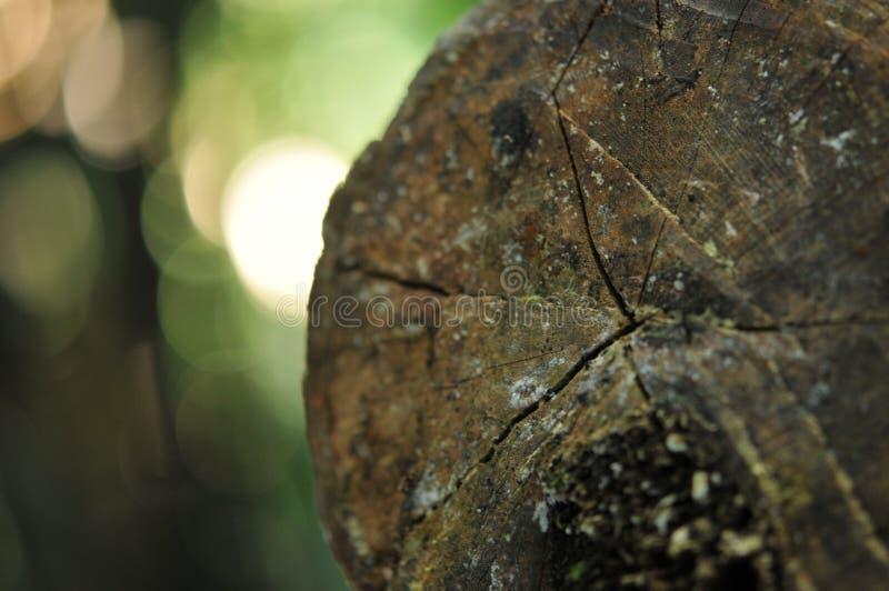 Деревянная предпосылка, текстура пользы старой винтажной расшивы деревянной как естественная предпосылка стоковые фото