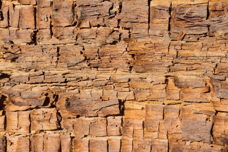 Деревянная предпосылка, текстура старой тухлой задавленной древесины стоковые фото
