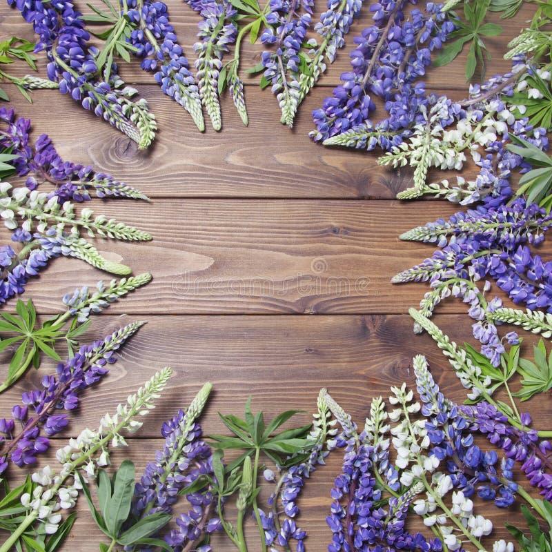 Деревянная предпосылка с рамкой цветков lupine стоковые изображения rf