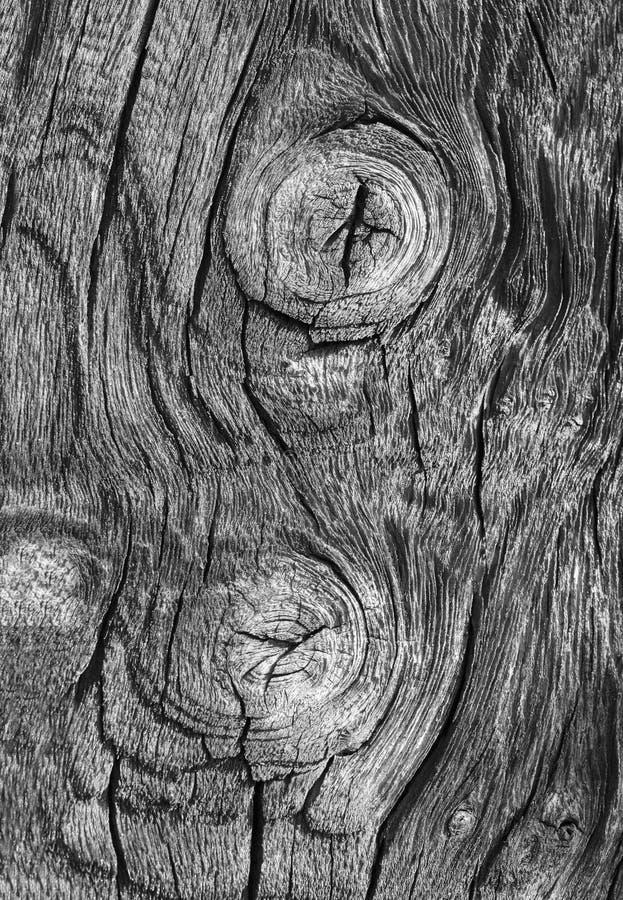 Деревянная предпосылка иллюстрация штока
