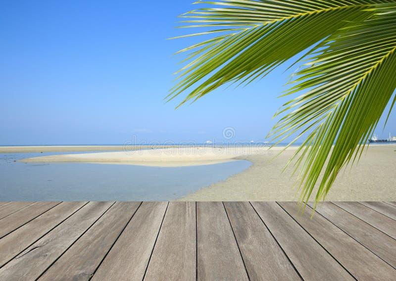 Деревянная планка над пляжем с пальмой кокоса стоковое фото