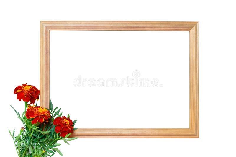 Деревянная рамка и букет ноготков цветков изолят стоковое изображение