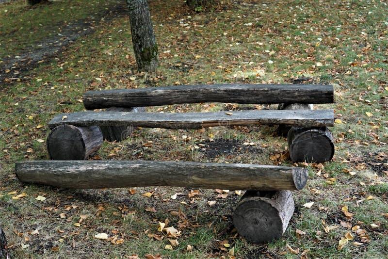 Деревянная скамья вносит дальше парк в журнал среди листьев стоковые изображения