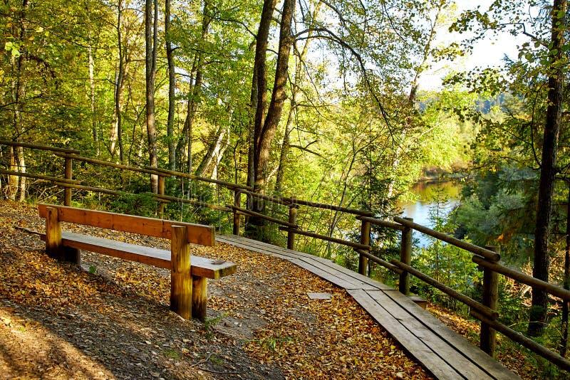Деревянная скамья в парке горы стоковые изображения rf