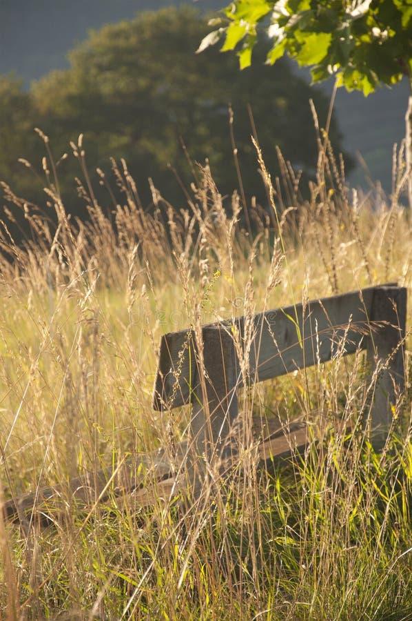 Деревянная скамья в сельской местности стоковые изображения