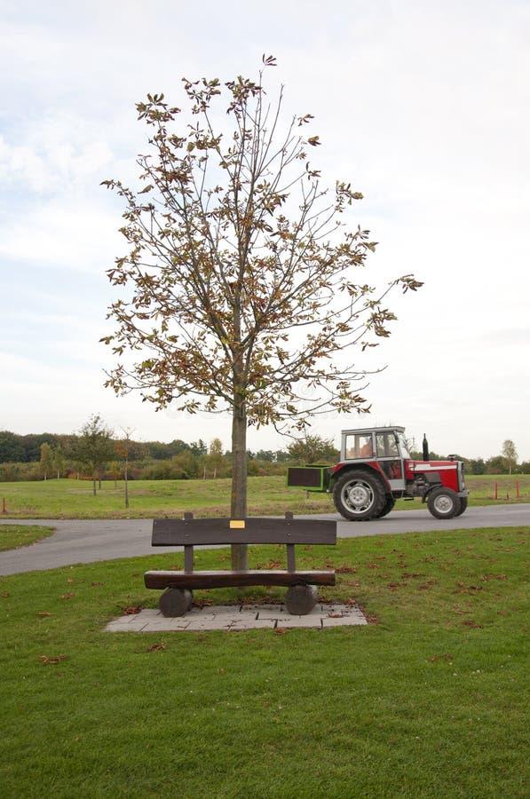 Деревянная скамья на поле для гольфа в осени, Германии стоковое фото