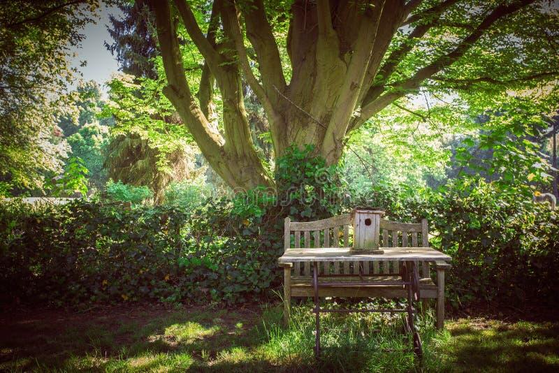 Деревянная скамья предлагает место для того чтобы сидеть в пригородном парке стоковая фотография