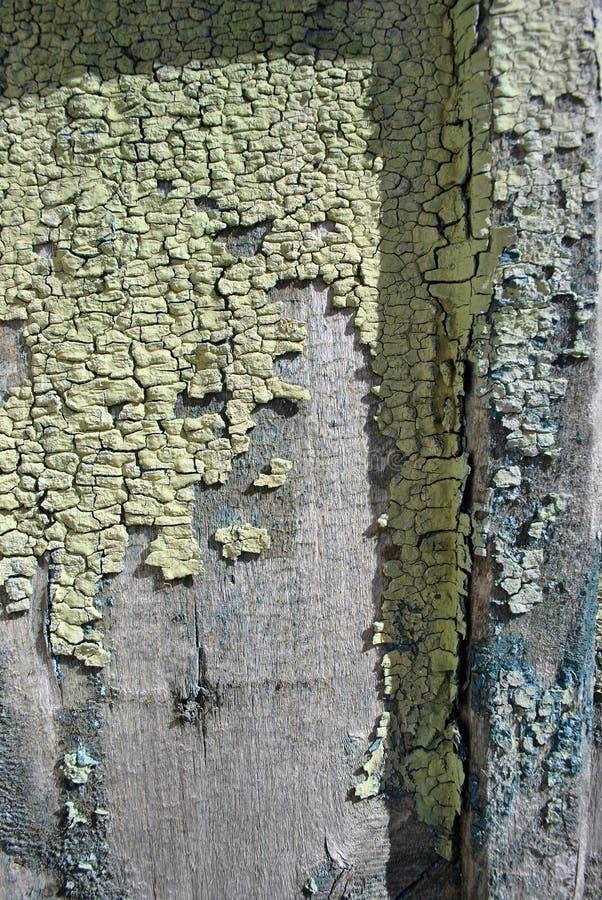 Деревянная старая поверхность стены покрашенная с зеленой, желтой затрапезной краской, вертикальной предпосылкой grunge стоковые изображения rf