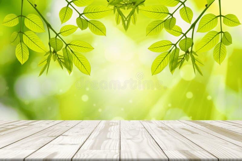 Деревянная таблица и листья зеленого цвета вися с зеленым цветом запачкали backgroun стоковое изображение rf