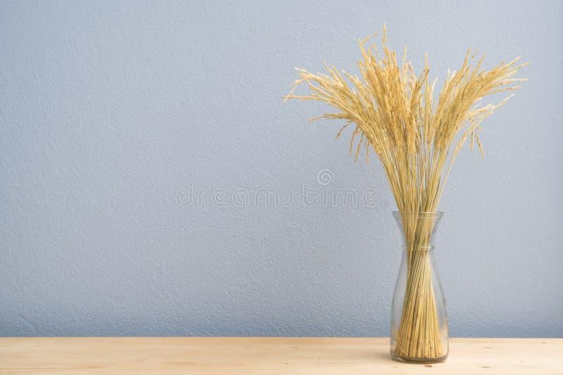 Деревянная таблица с высушенным золотым деревом риса на стеклянной бутылке и голубой стене цемента стоковые фотографии rf