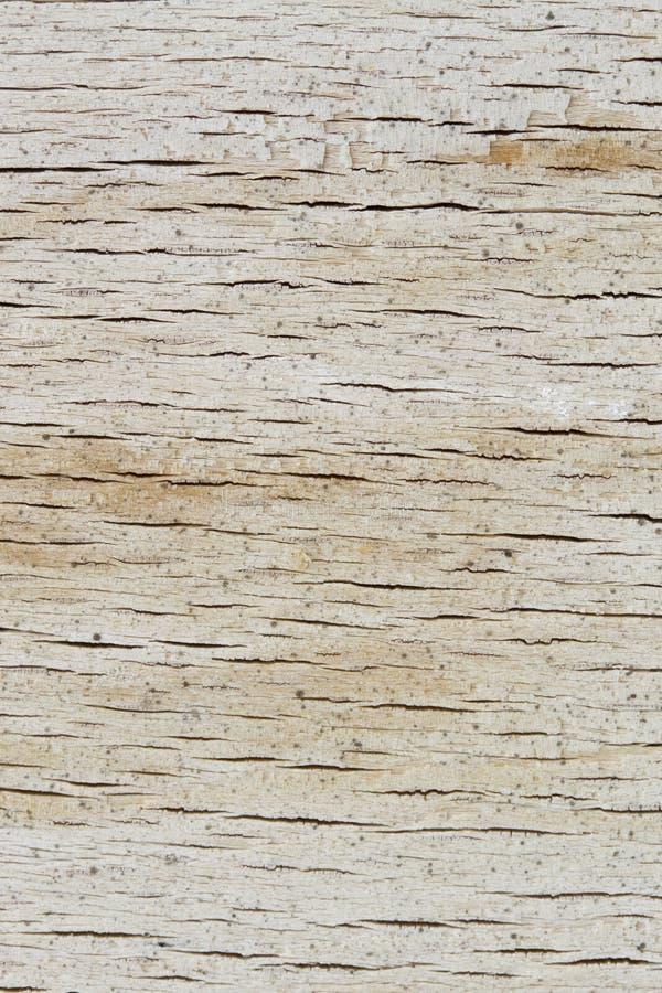 Деревянная текстура доски стоковое фото rf
