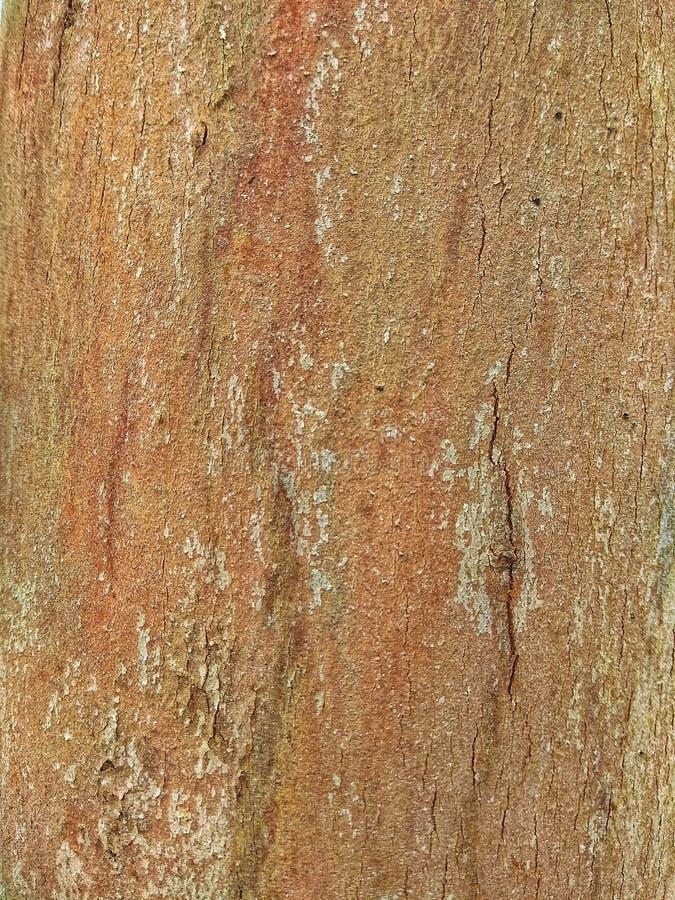 Деревянная текстура пола иллюстрация вектора