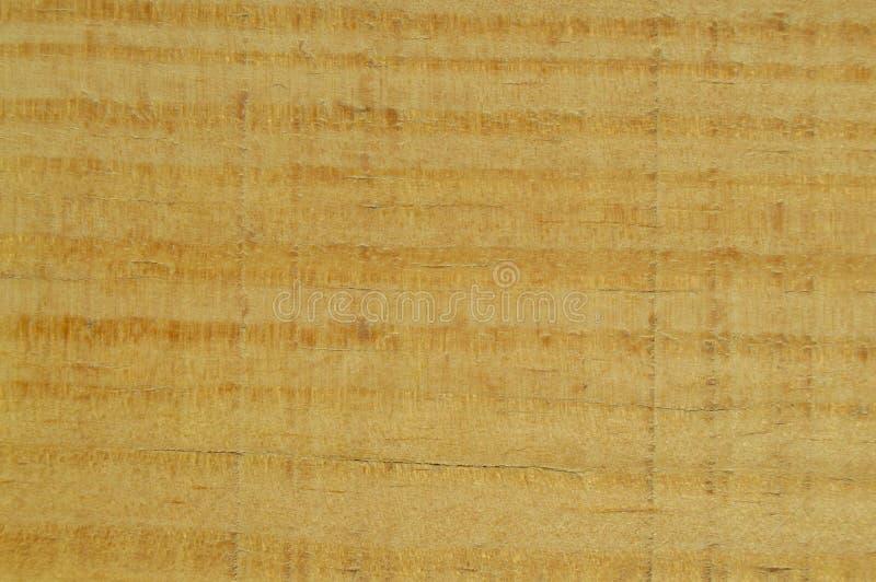 Деревянная текстура сосны Зерно, крышка стоковое изображение