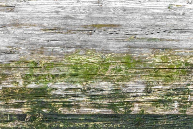 Деревянная текстура, с выдержанным взглядом стоковая фотография rf