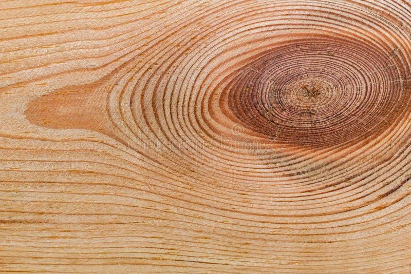 Деревянная текстура с естественной картиной стоковое изображение