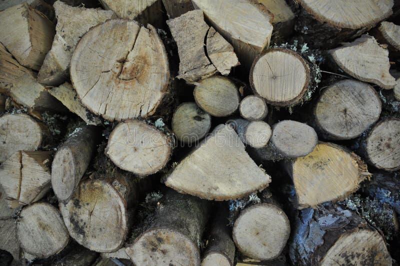 Деревянная текстура стоковая фотография