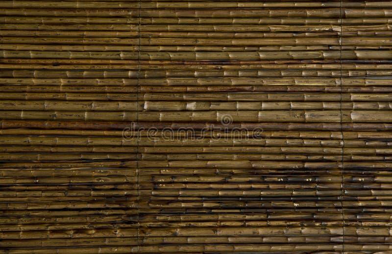 Деревянная текстура иллюстрация вектора