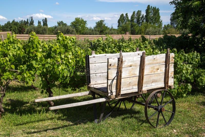 Деревянная тележка на винограднике стоковые изображения
