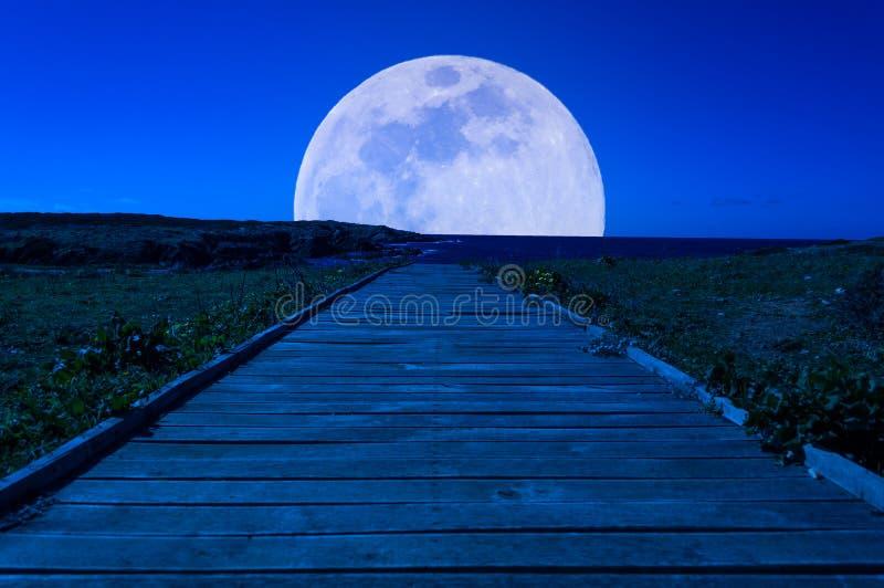 Деревянная тропа к луне стоковые изображения