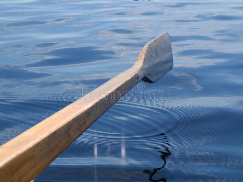 Деревянное весло стоковое изображение