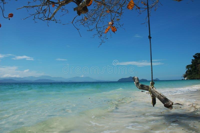 Деревянное качание с предпосылкой seascape стоковое фото
