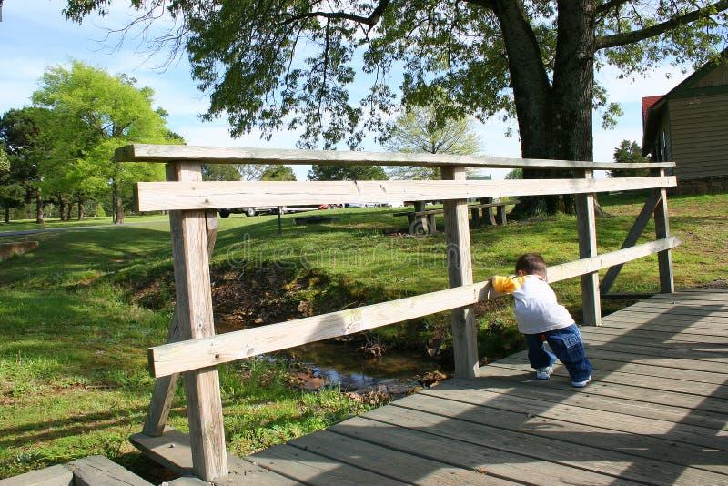 деревянное моста мальчика малое стоковые изображения rf