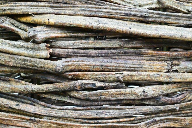 Деревянное объятие стоковая фотография