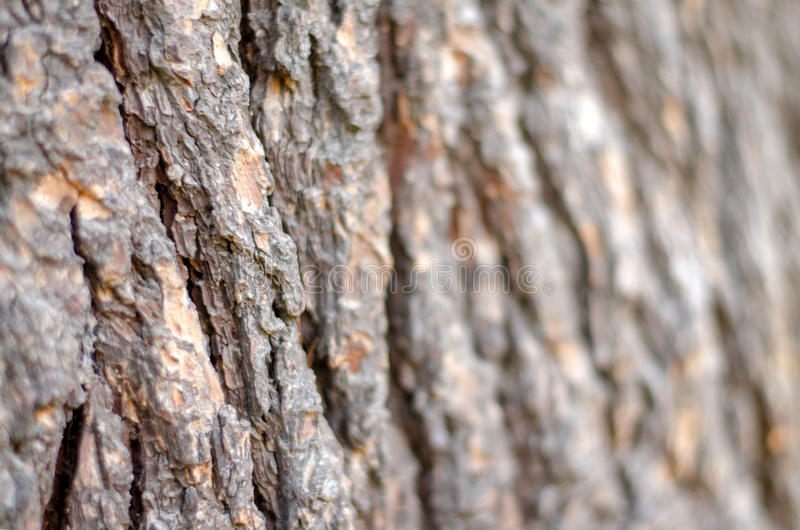 Деревянной предпосылка blured расшивой стоковые фотографии rf