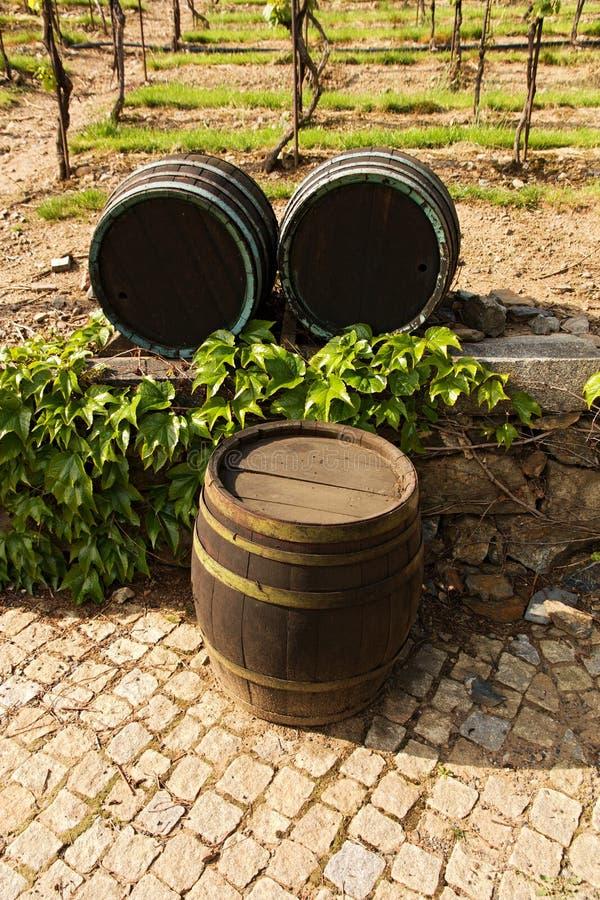 Деревянные бочонки для вина стоковые изображения