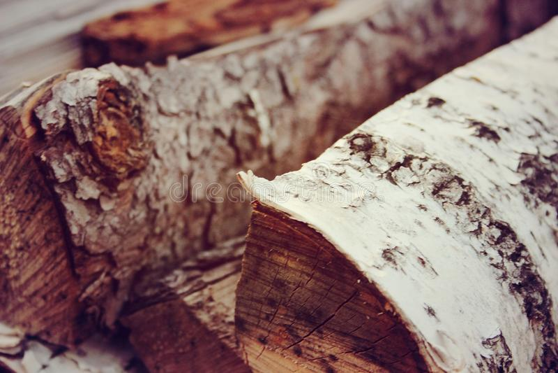 Деревянные журналы березы стоковое изображение