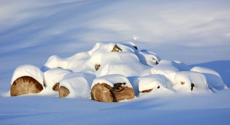 Деревянные журналы под снегом стоковое фото rf