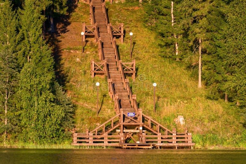Деревянные лестницы стоковое изображение