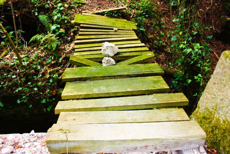 Деревянные лестницы теперь тухлые и тухлые, вытравленный сыростью и природой что выдвижения, раз был частью конструкции стоковое фото rf