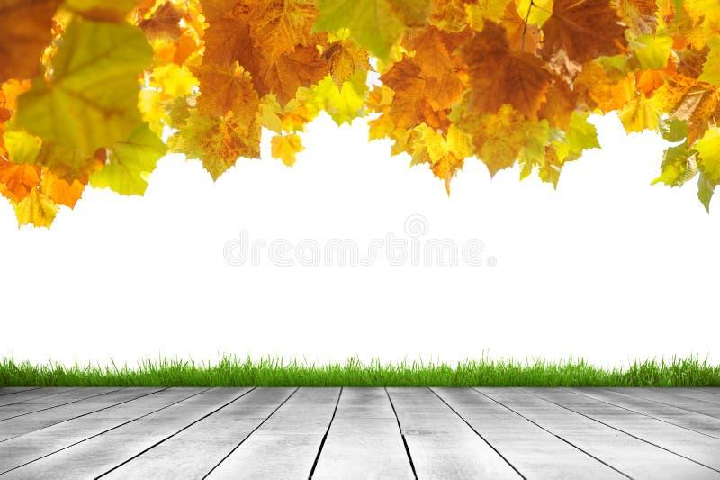 Деревянные листья планки и осени в белой предпосылке стоковое фото