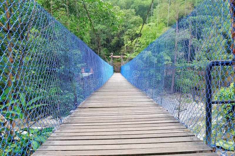 Деревянные мосты на водопаде Chamang стоковые изображения rf
