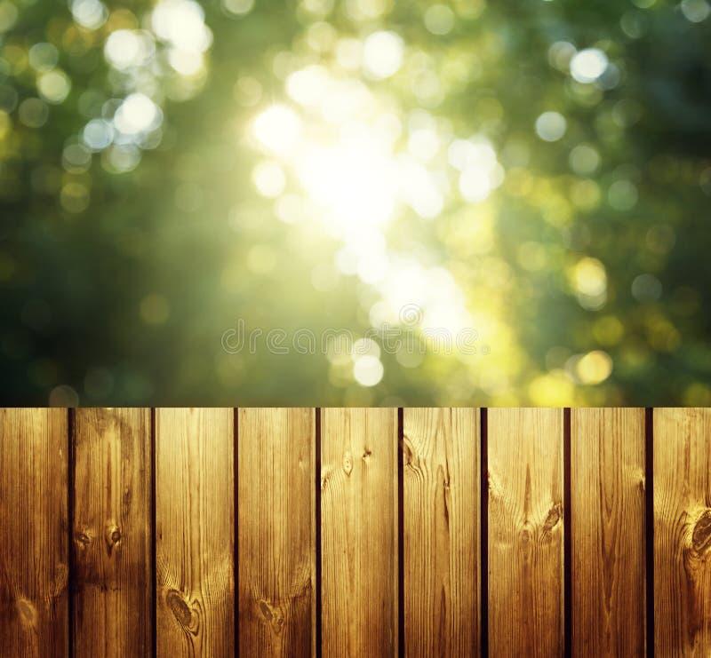 Деревянные поверхность и лес стоковая фотография