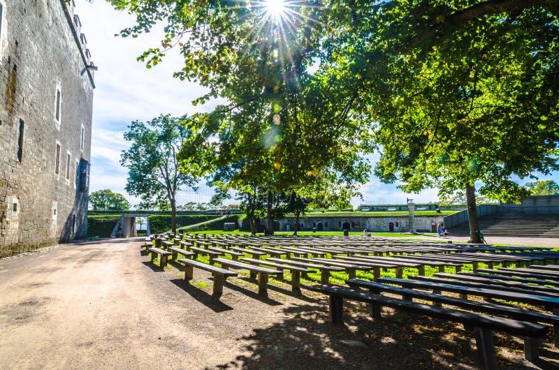 Деревянные скамьи на Kuressaare как солнце исчерчивают через деревья стоковая фотография rf