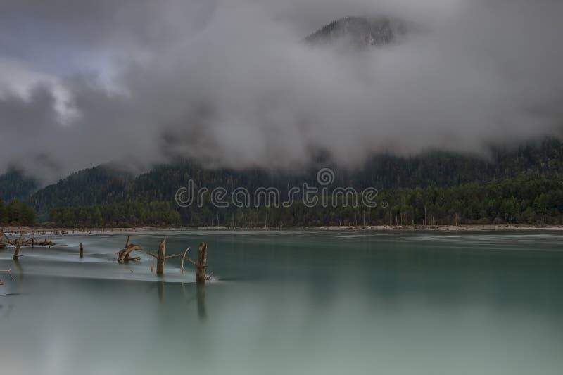 Деревянные столбы в реке стоковые изображения