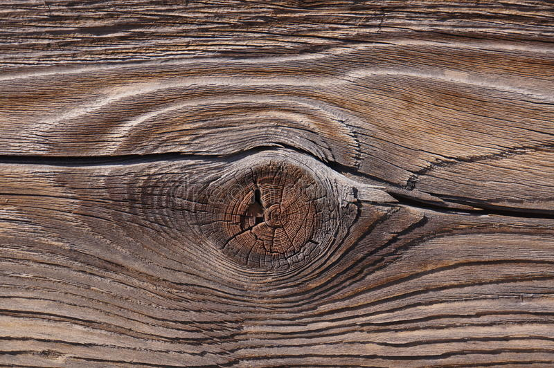 Деревянные узел и зерно стоковое изображение rf