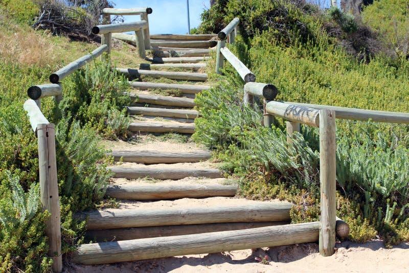 Деревянные шаги Поляка к пляжу стоковая фотография