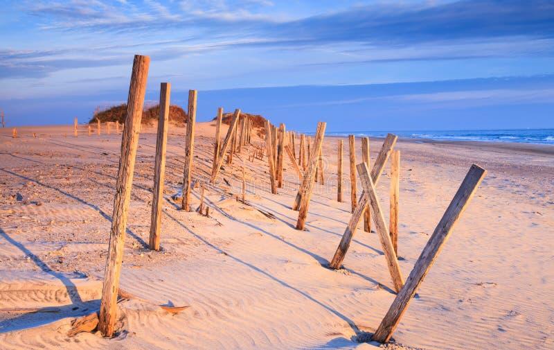 Деревянные штабелевки на песчаном пляже Северной Каролине стоковые фотографии rf