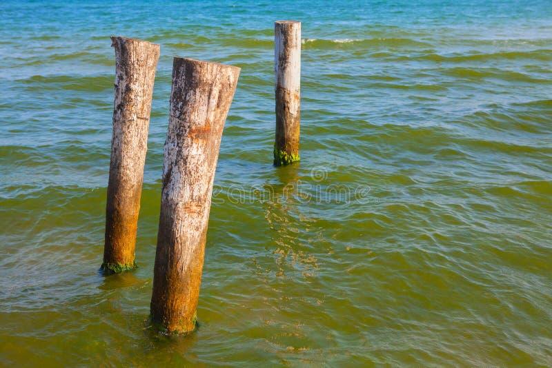 Деревянные штендеры в воде стоковые фотографии rf