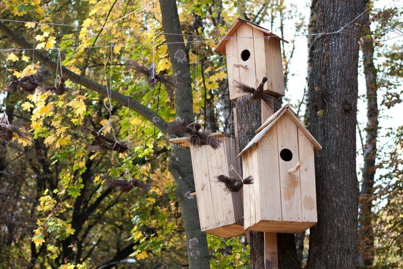 Деревянные birdhouses в парке осени стоковые изображения rf